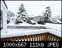 Freak September Snowstorm Blasts Calgary-img_2881-w1k-q70.jpg
